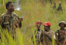 Photo of Ituri : Cinq personnes tuées et une voiture brûlée dans une attaque attribuée aux ADF
