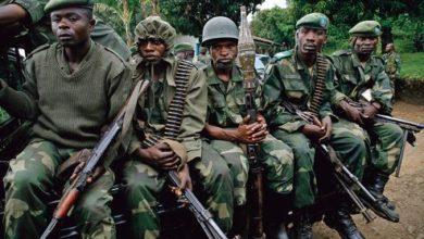 Photo of Ituri : L'armée annonce avoir neutralisé 17 miliciens CODECO en l'espace de deux jours à Djugu