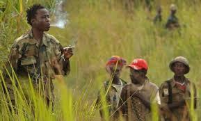 Photo of RDC : 7 morts dans deux attaques des ADF à l'Est du pays