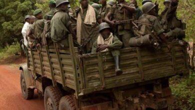 Photo of Ituri : 15 villages occupés par les miliciens de la CODECO dans le territoire de Djugu récupérés par les FARDC